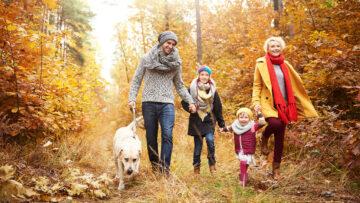 Herbstblues oder gestresst? So hilft die Natur